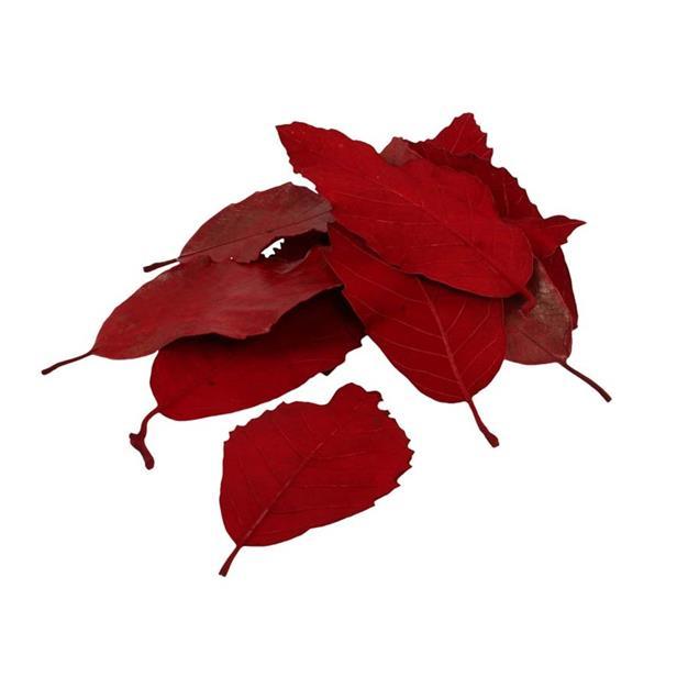 Pynte blade - 25 stk - Røde