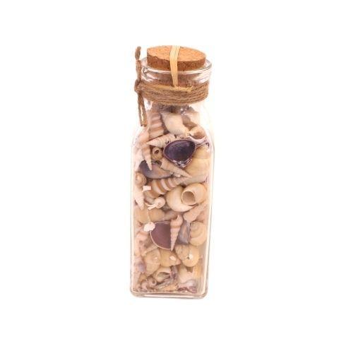 Strandskaller i flaske - Blålige - H 19 cm
