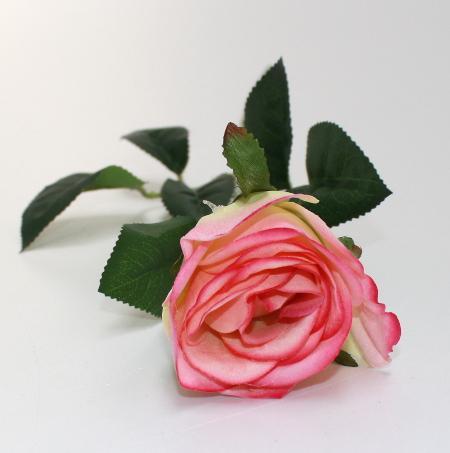 Kunstig langstilket Rose - Råhvid og pink- 50 cm